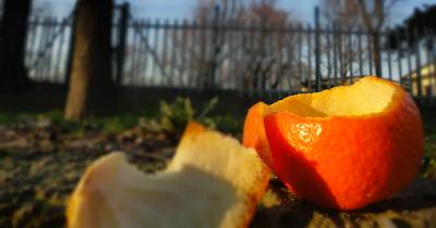 fruta macerada