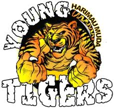 live streaming Harimau Muda vs Tampines Rovers