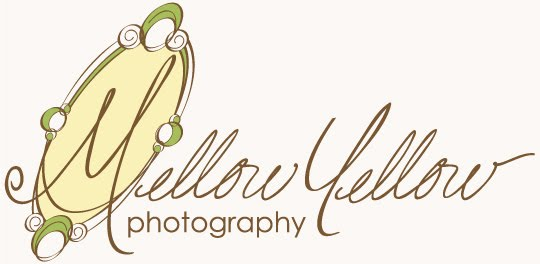Mellow Yellow Photography/NW Arkansas Lifestyle Photography
