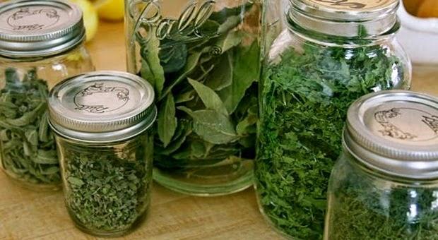 NARODNI LIJEK PROTIV SVIH VRSTA CISTI kuhinja i ideje