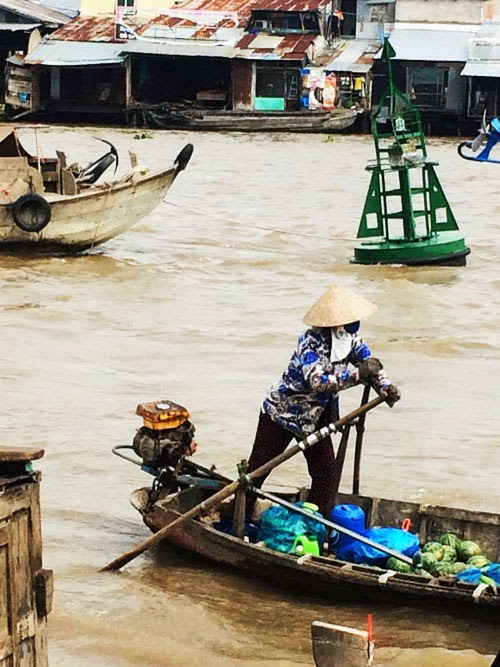 mekong delta in vietnam via small acorns blog