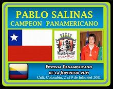El Circuito Escolar de Ajedrez Provincia de Quillota FELICITA al CAMPEON PANAMERICANO PABLO SALINAS