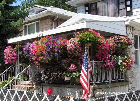 hanging baskets on a front porch