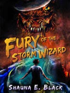 Fury of the Storm Wizard
