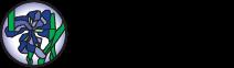 Klaasvitraazid