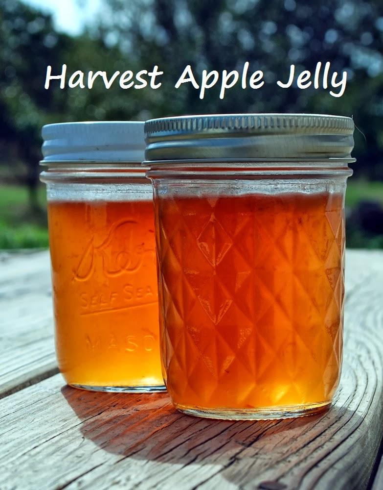 Oak Hill Homestead: Harvest Apple Jelly