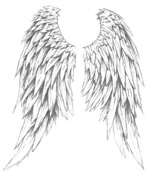 As reference I used this pair of wings And I created a somewhatVictorian