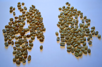 Green semi-washed / honey processed beans vs. washed beans