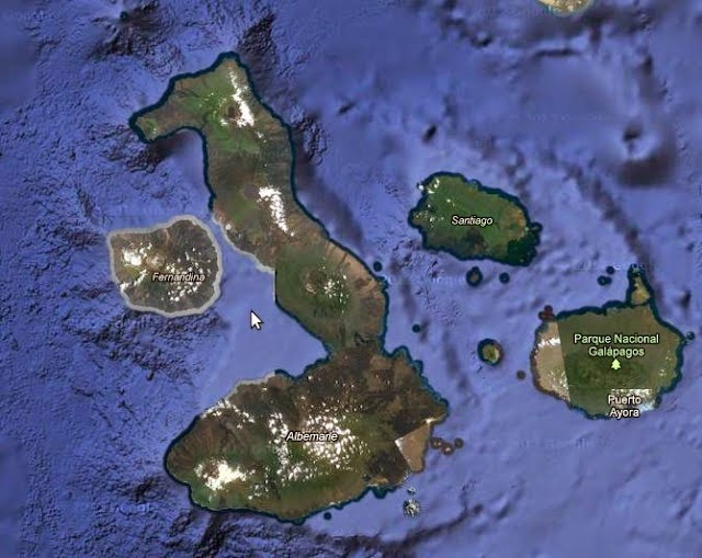 Pulau Kuda Laut