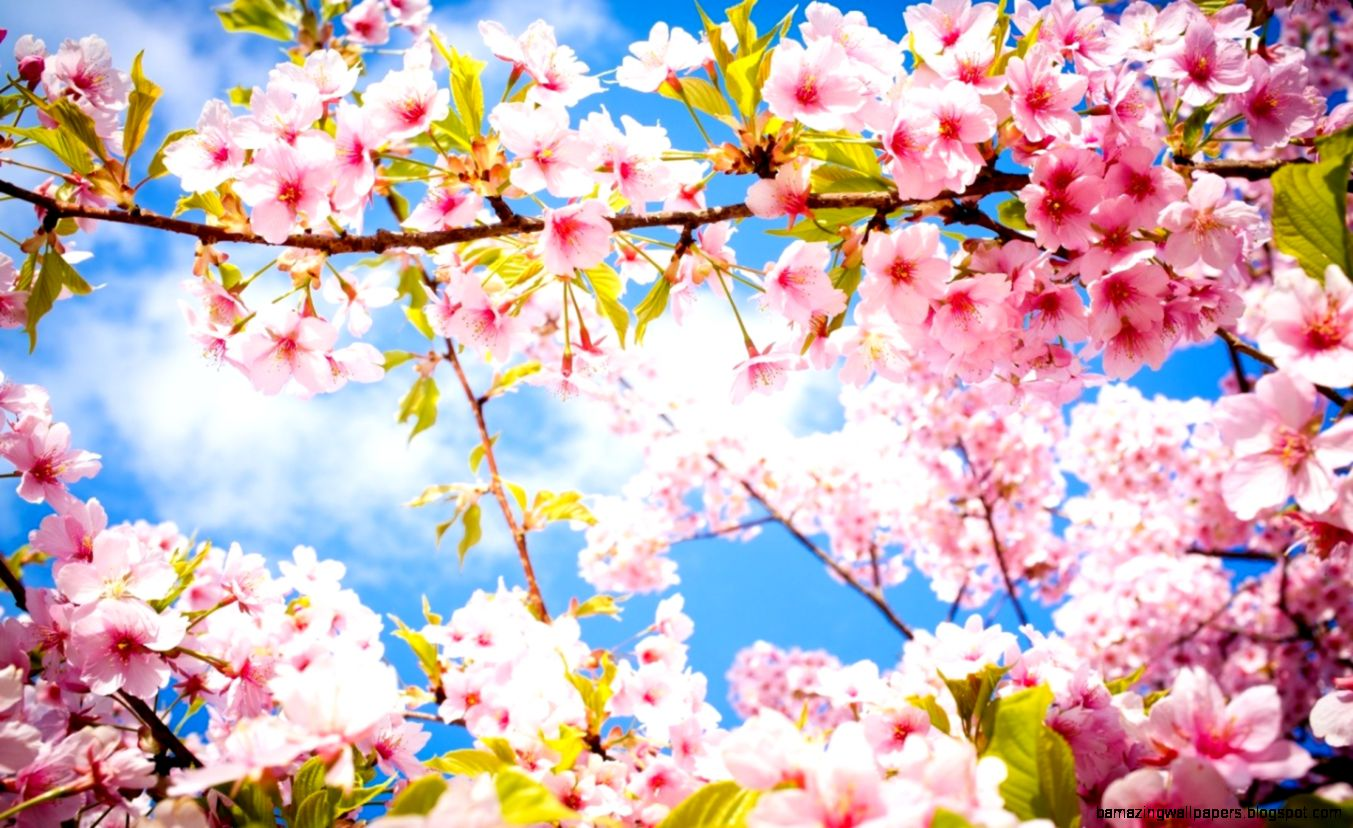 FunMozar – Happy Spring Day Wallpapers