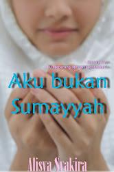Novel islamik