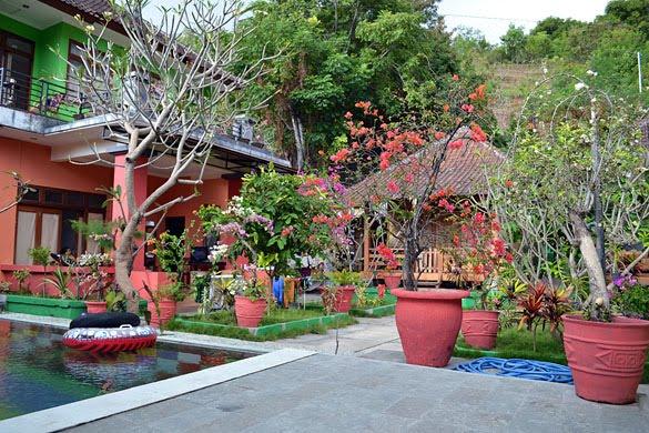 Alola Inn, Padangbai, Bali