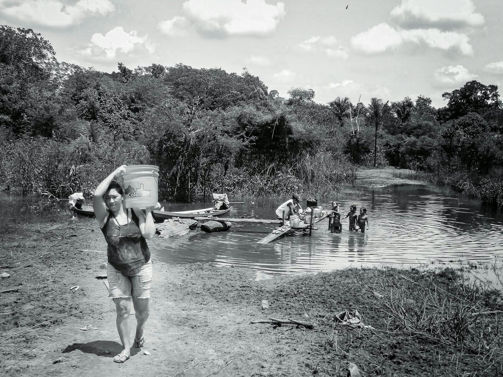 O Desafio de Sobreviver às Margens do Igarapé