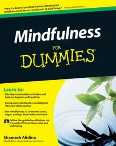 Mindfulness for Dummies, Shamash Alidina