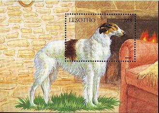 1999年レソト王国 ボルゾイの切手シート