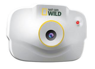 Image: Uncle Milton Nat Geo Wild Pet's Eye View Camera - Shop USA