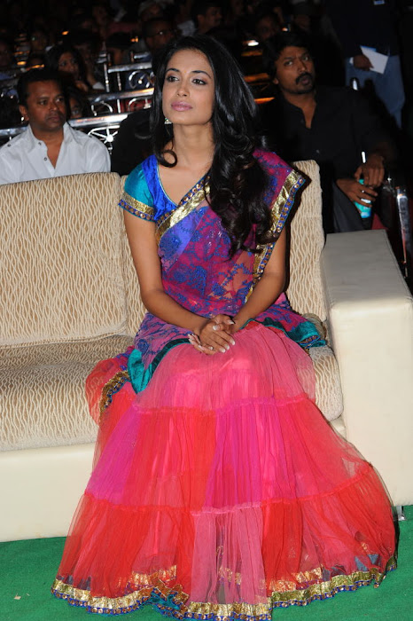 sarah jane dias at panjaa audio launch, sarah jane dias latest photos