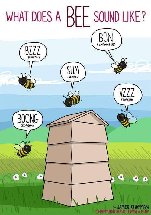http://lafamiliapicola.blogspot.com/2015/08/zumbido-de-una-abeja-en-distintos.html