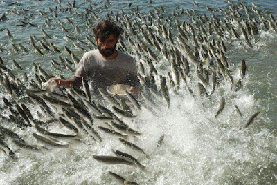 Рыбалка!