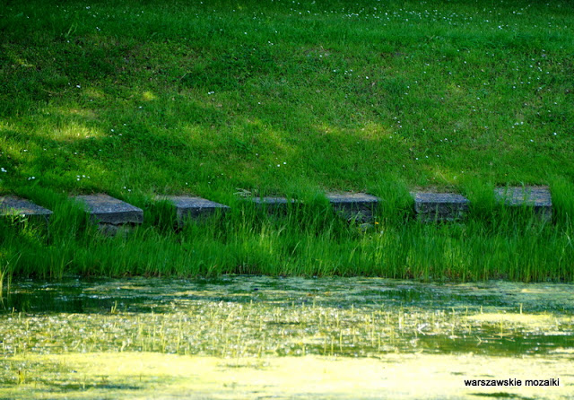 Warszawa Mokotów parki warszawskie park zieleń