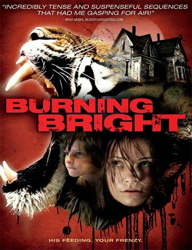 Ver Atrapada (Burning Bright) (2010) Online