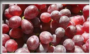 buah-buahan_anggur