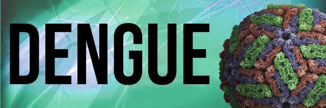 Dengue posts