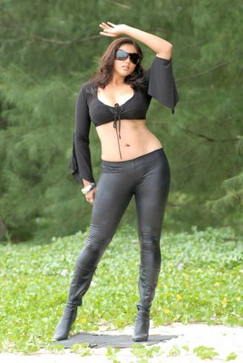 Labels: mallu actress namitha , mallu aunty namitha , namitha ...