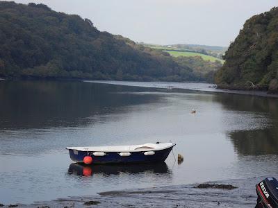River Fowey at St Winnow Cornwall