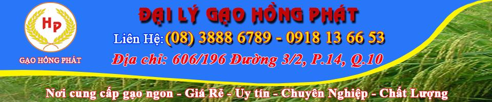 Gạo Ngon Hồng Phát | Gạo đặc sản | Gạo giá rẻ | Gạo ngon đặc sản | Gạo ngon Sài Gòn