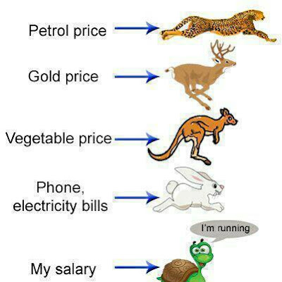 The Effect of the price hick funny pics