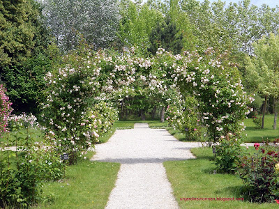 Design la roseraie de Provins