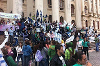 Manifestação em Curitiba em defesa do Código Florestal. Foto: SOS Mata Atlântica/Divulgação