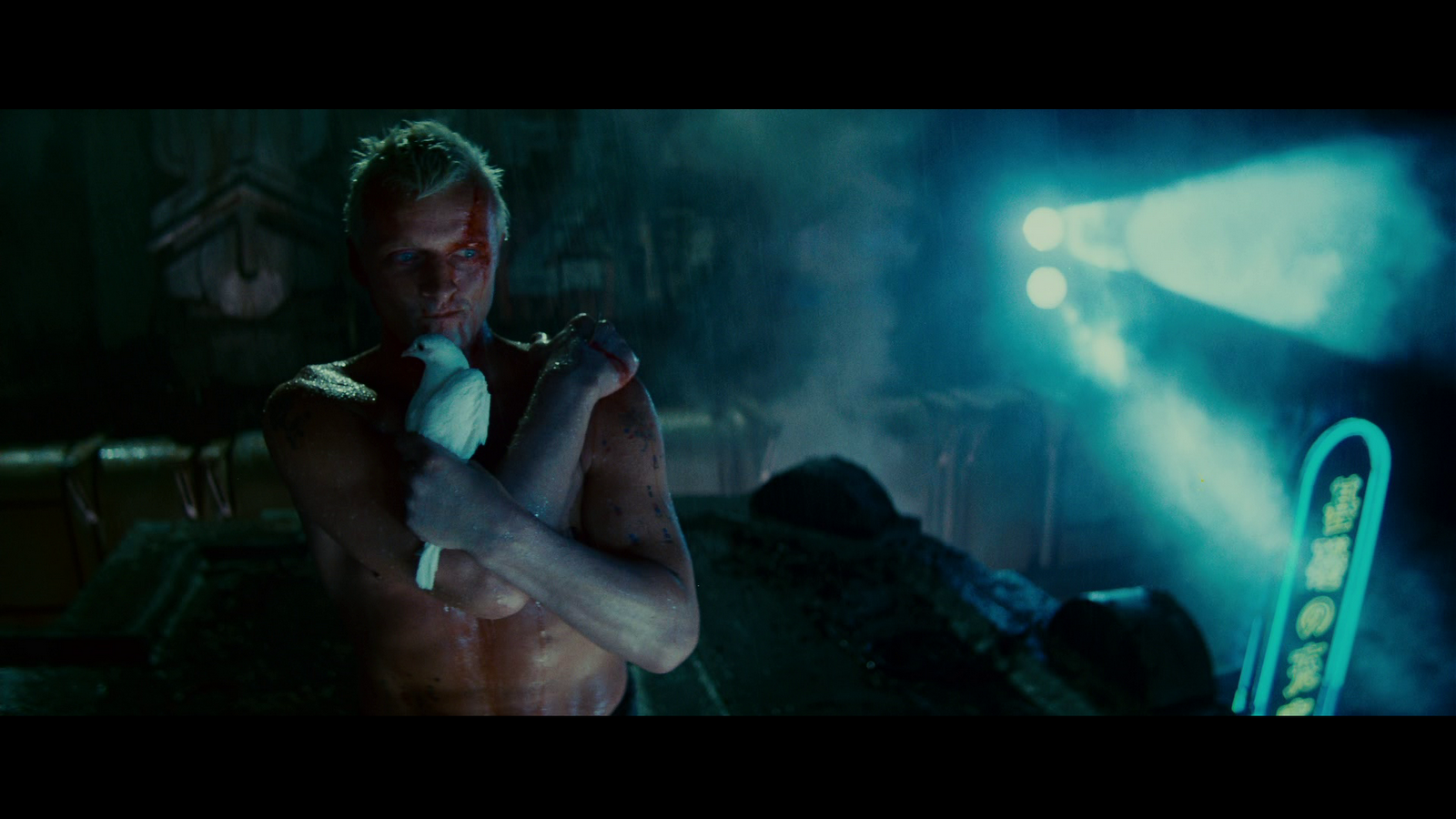 Gimme More Bananas: Blade Runner - photo#37