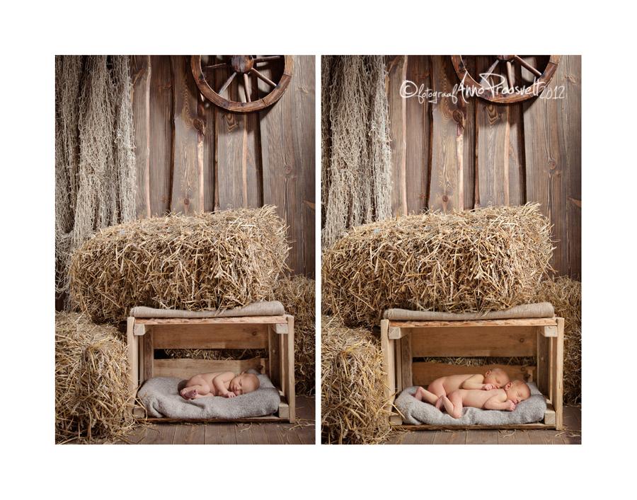 vastsyndinud-beebid-pildistamas-fotopesa