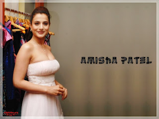Amisha Patel Sexy wallpaper stills