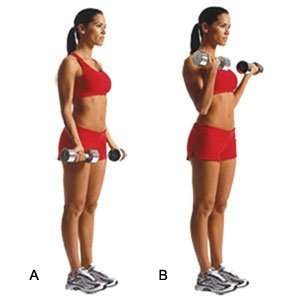 How to Burn Belly Fat With Weight Training