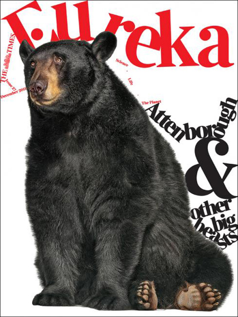 Eureka Bear Cover