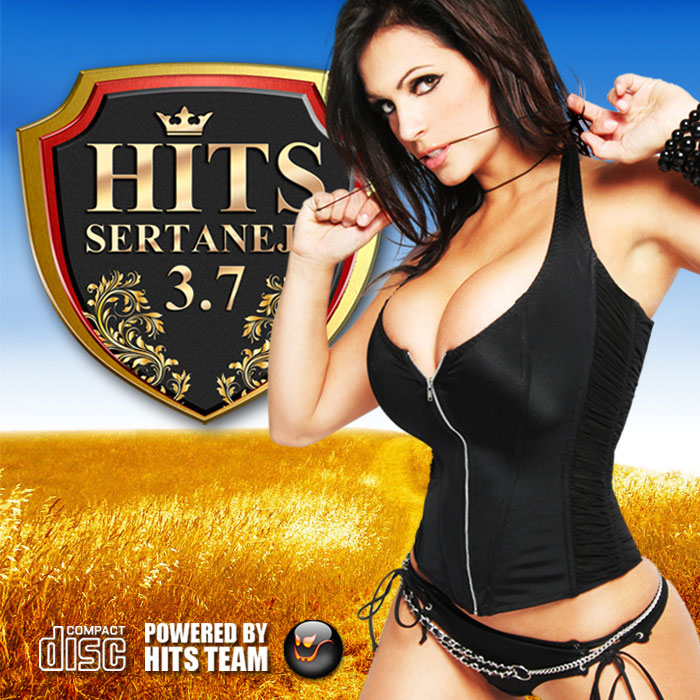 Hits Sertanejo - 3.7