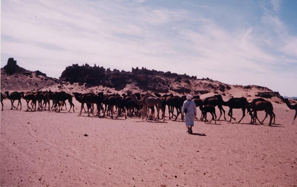 Rencontres ephemeres maroc