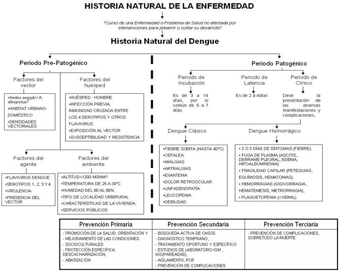 esquema historia natural enfermedad: