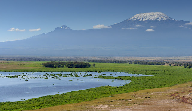 Shores of Lake Amboseli with a perfect view of Mt.Kilimanjaro