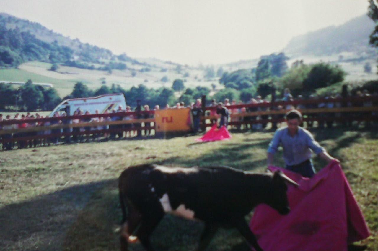 ARLOS LLANERA TOROS