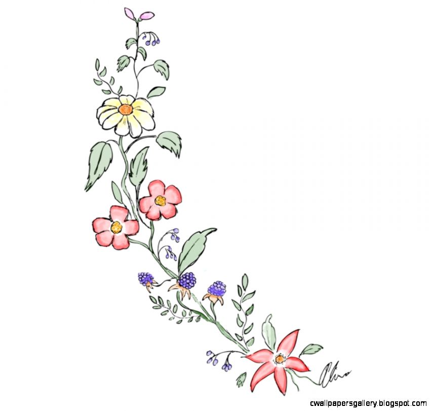 Tumblr Transparent Flower Drawing  cool stuff  Pinterest