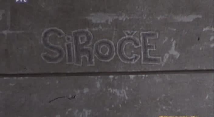 Сирота / Siroce.