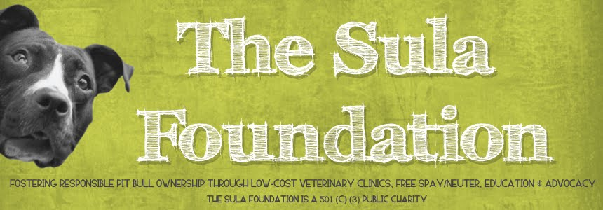 The Sula Foundation