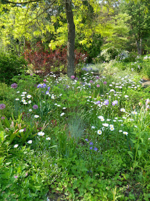 James Gardens Etobicoke spring 2015 by garden muses-not another Toronto gardening blog