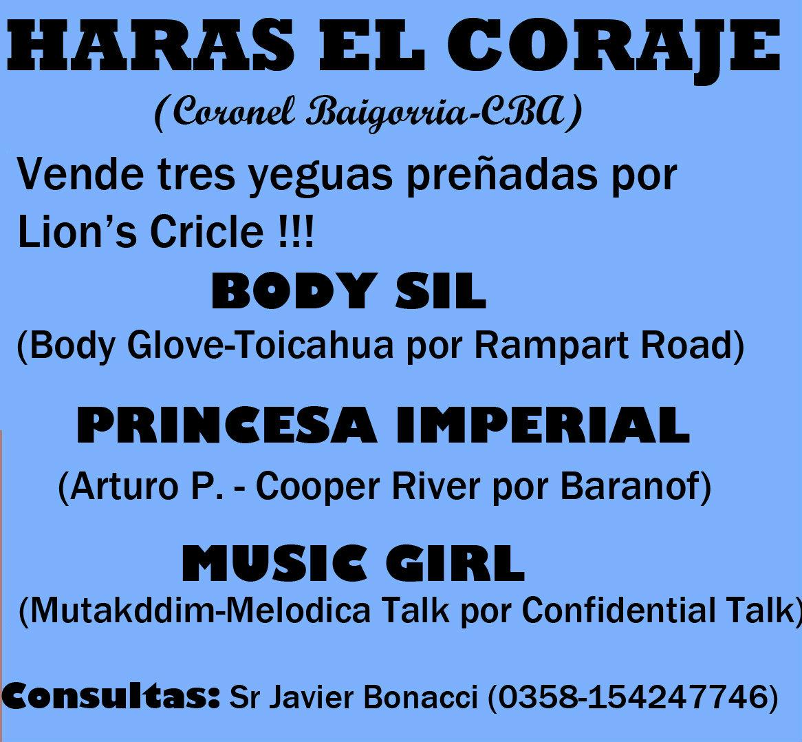 HS EL CORAJE YEGUAS MADRES