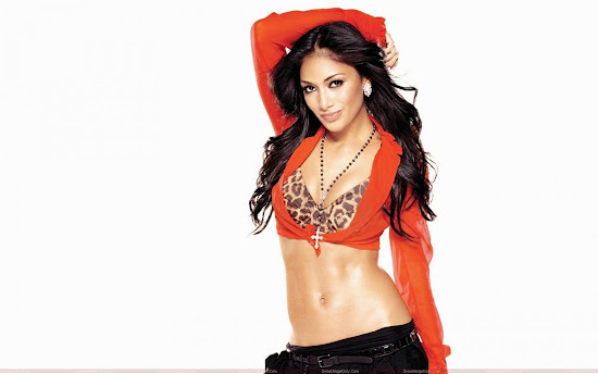 nicole_scherzinger_beautiful_wallpaper