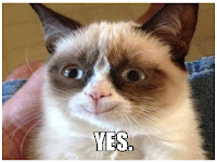 "grumpy cat smiles and says ""YES"""